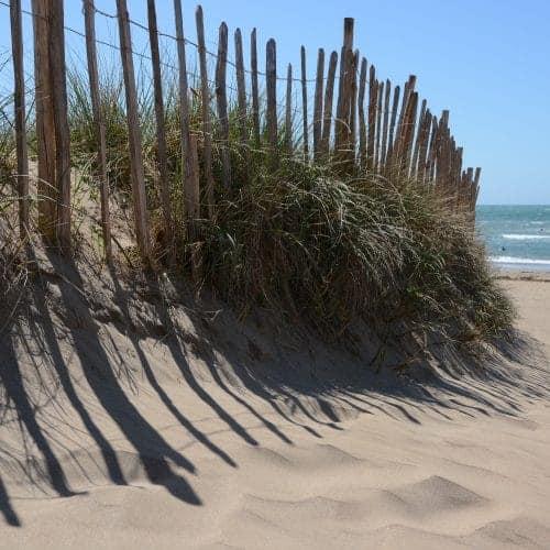Surf Bantham Beach